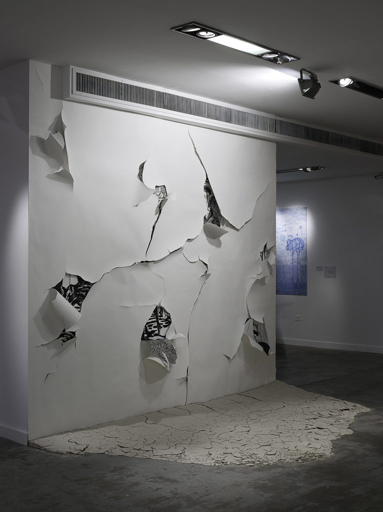 Viviana Blanco Domestico desierto carbonilla  papel y arcilla cruda sobre muro Medidas variables MUNTREF Universidad Tres de Febrero Buenos Aires 2013  Premio Braque (2)