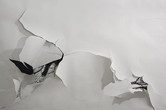 Viviana Blanco dibujo sobre muro carbonilla y papel medidas variables Premio Braque 2013