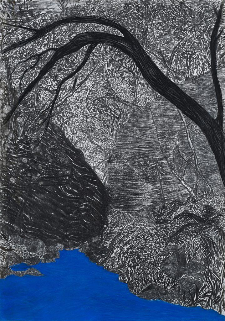 Viviana Blanco. El beso de las montañas carbonilla y pastel 100 x 70 cm 2019