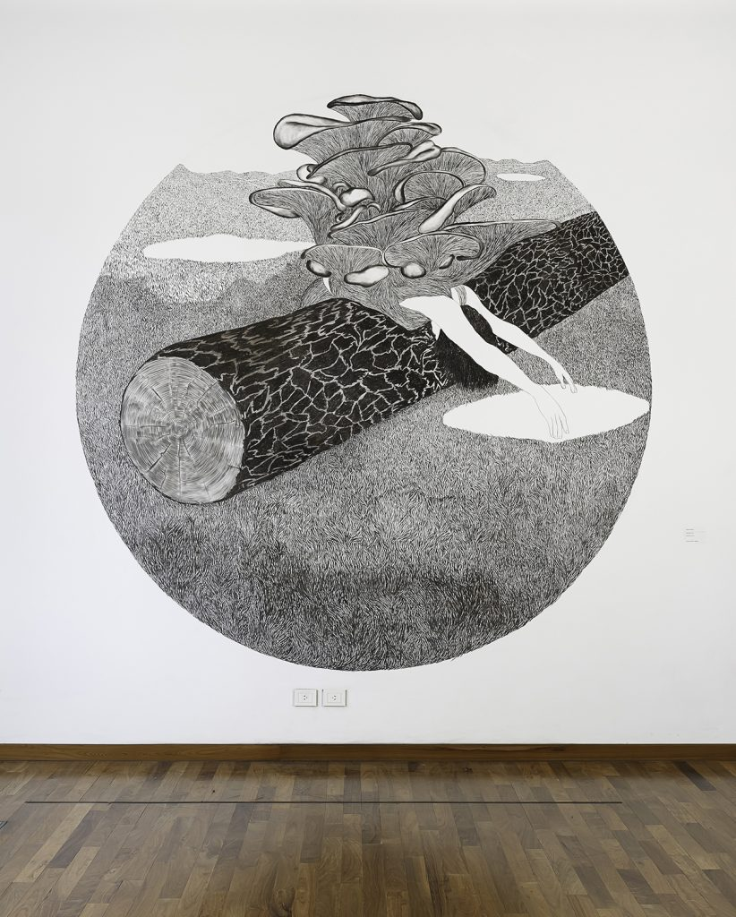 Viviana Blanco Sin Titulo Carbonilla sobre muro Medidas variables Interfaces Una Antologia Centro Cultural Kirchner 2015